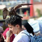 Marokko Menschen + Tiere -2-