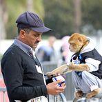 Marokko Menschen + Tiere -4-