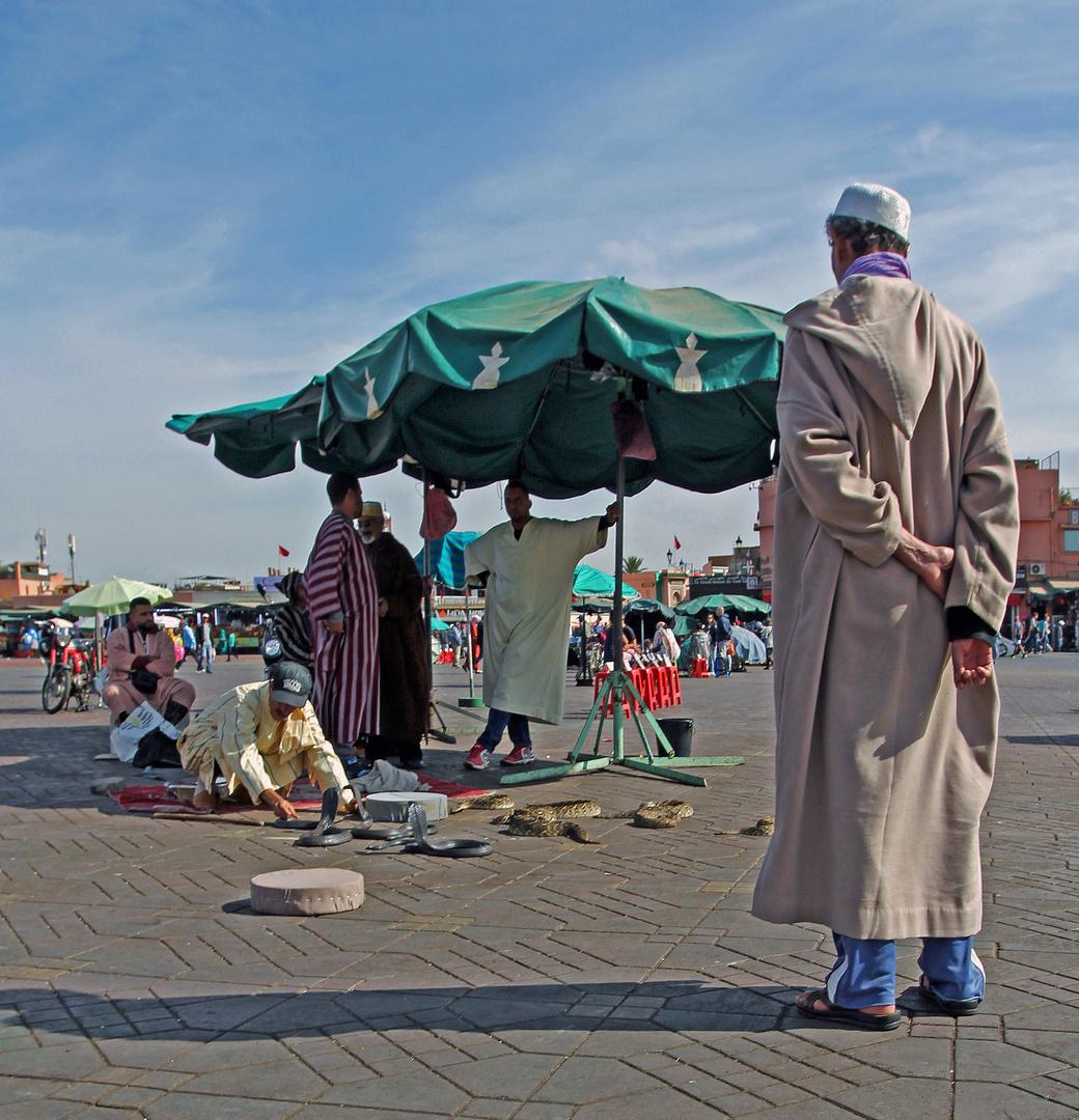 Marokko Menschen + Tiere -7-
