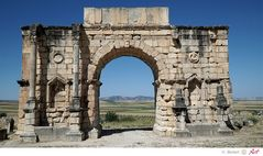Marokko: Triumphbogen in Volubilis Bild 11