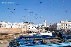 Marokko/Essaouira