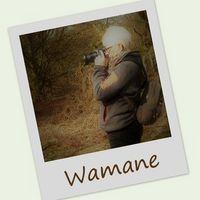 Marpic_natura