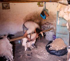Marrakech 04/2011: Gerber-Viertel