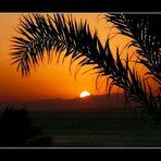 Marsa Alam (Egypt)