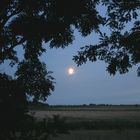 Marsch und Mond