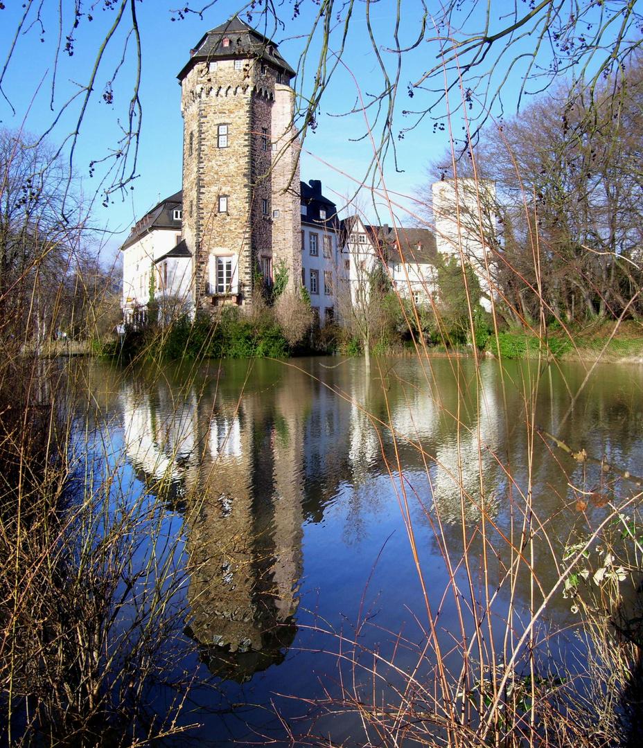 Martinsschloss bei Hochwasser