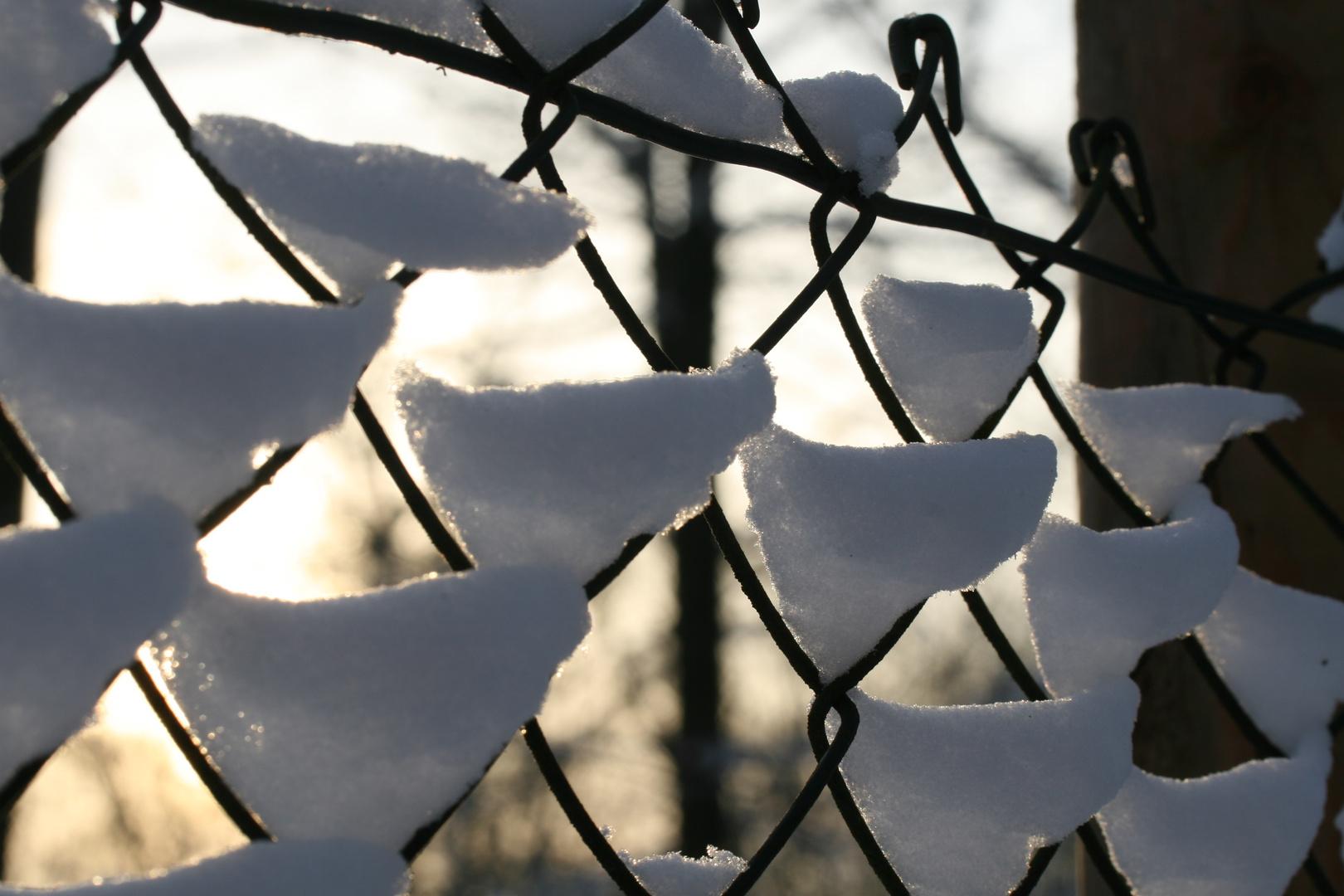 Maschendrahtzaun im Winter
