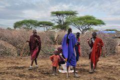 Massai Männer