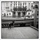 Massimo jagte gerne Kapitäne und Gondolieri