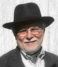 Massimo Perrini