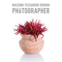 Massimo Tessandori Bernini