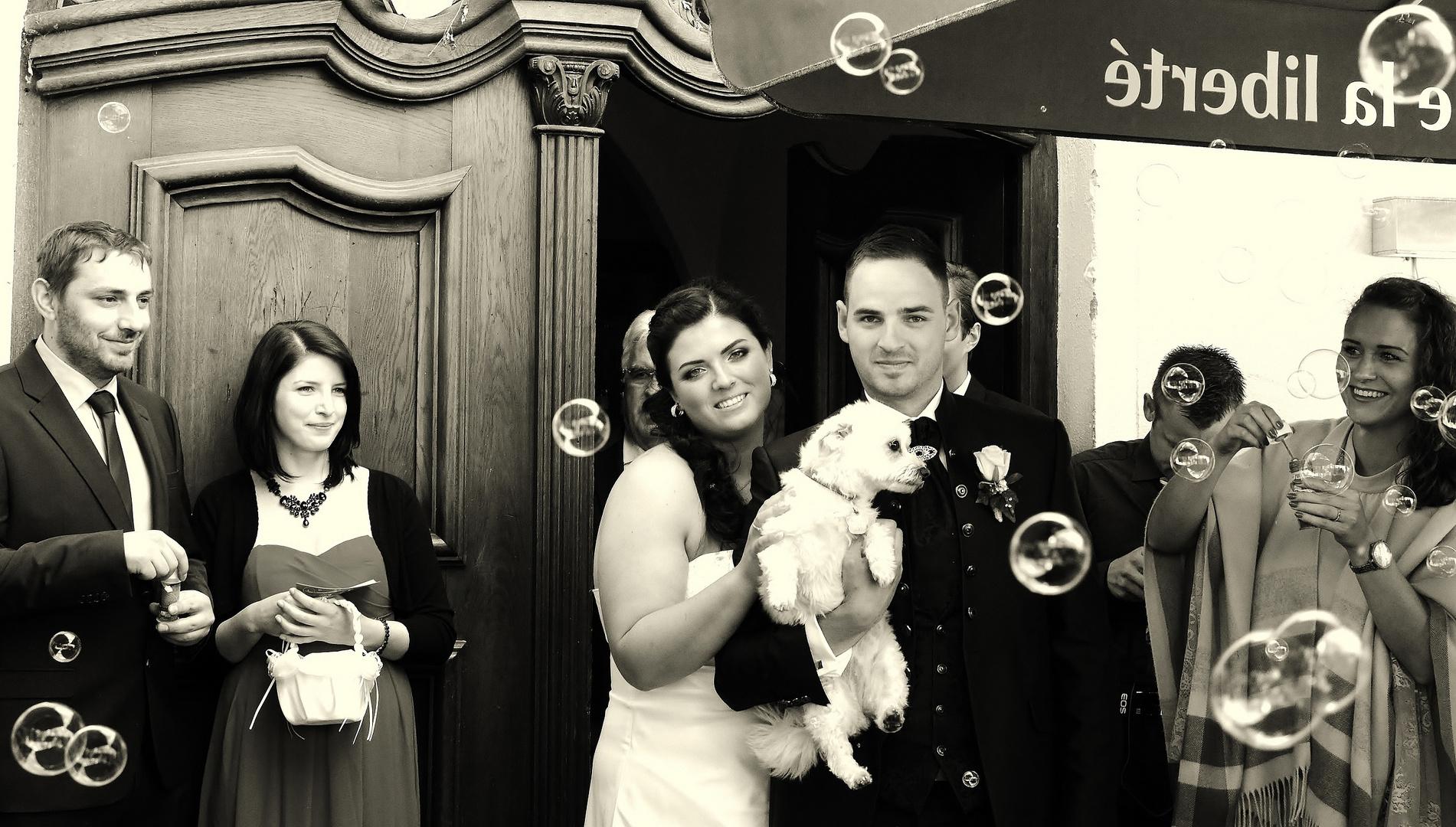 Matrimonio, fotografa matrimonio 2015