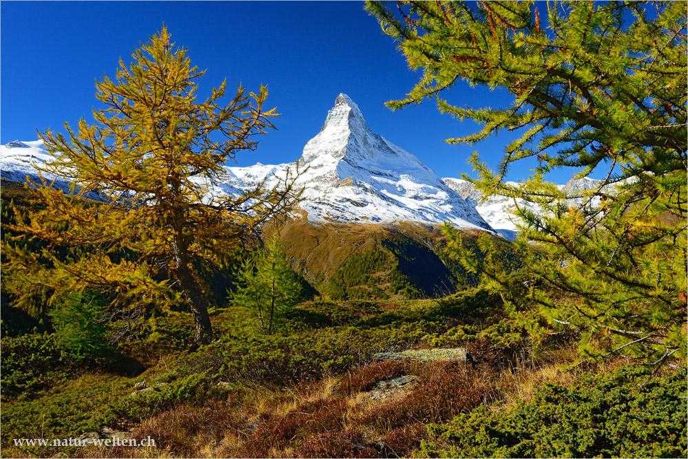 - - - Matterhorn - - -