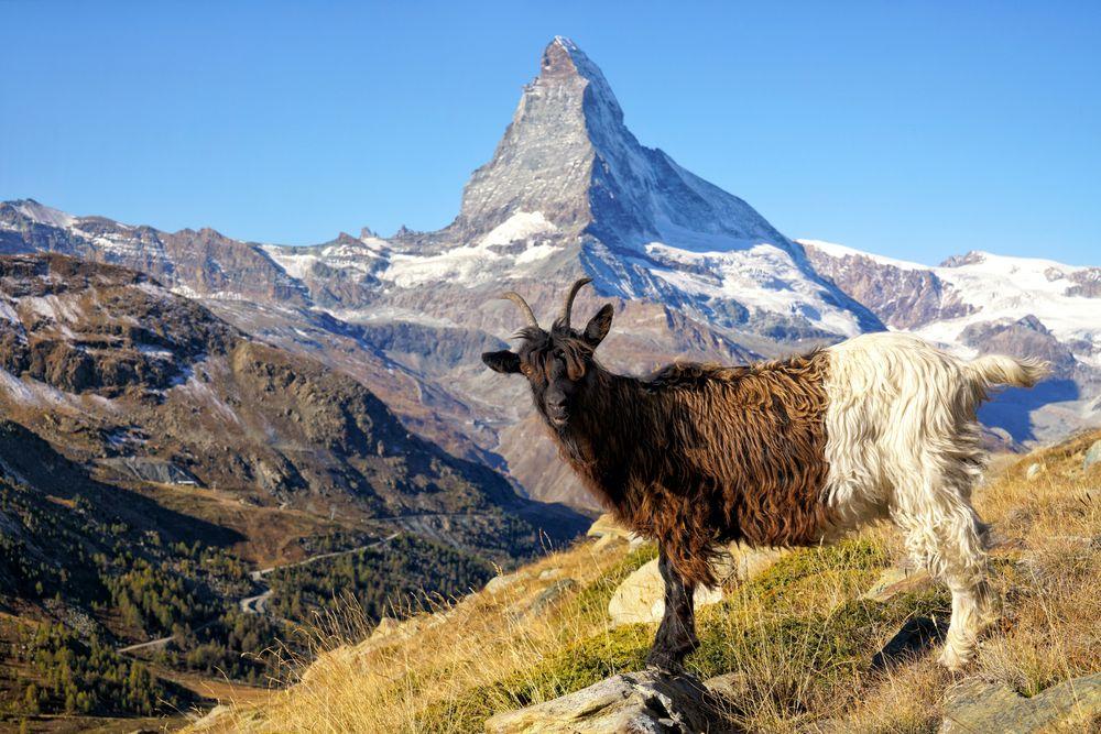 Matterhorn und Co.