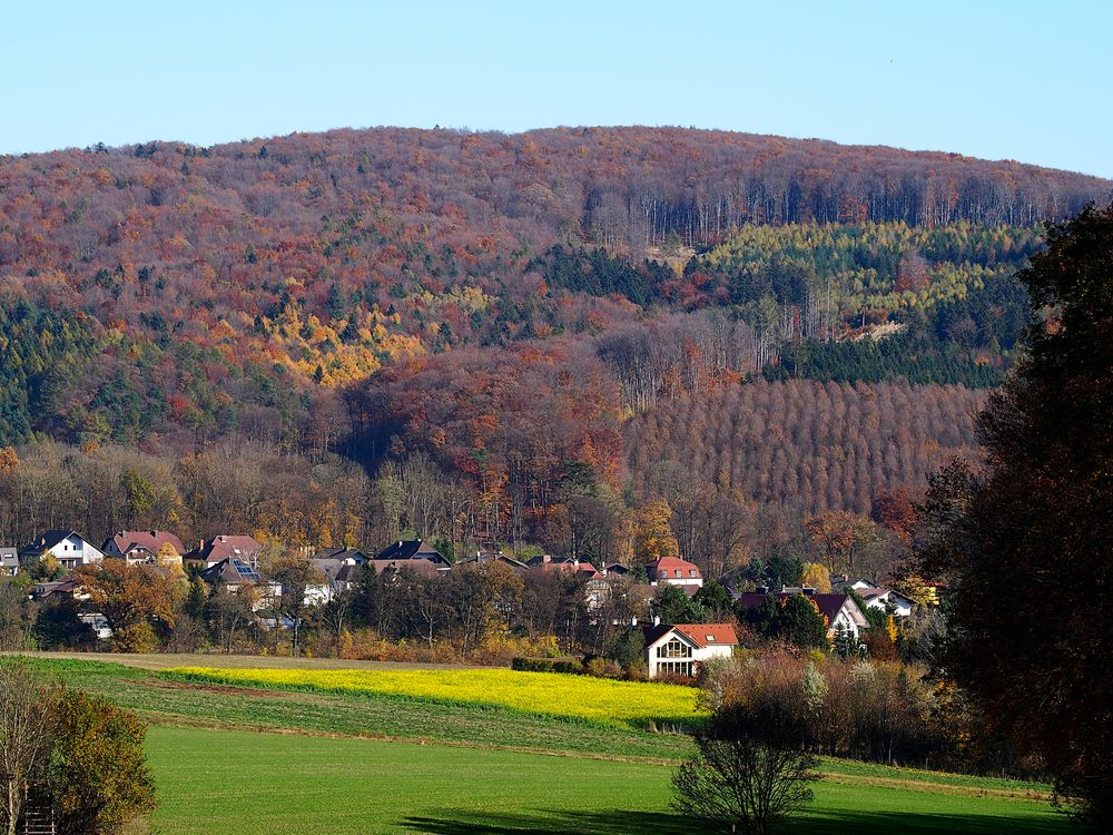 mauerbach