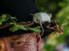 Maus und Hut