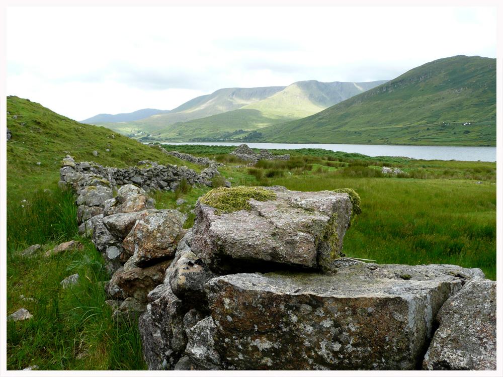 Mayo Wall