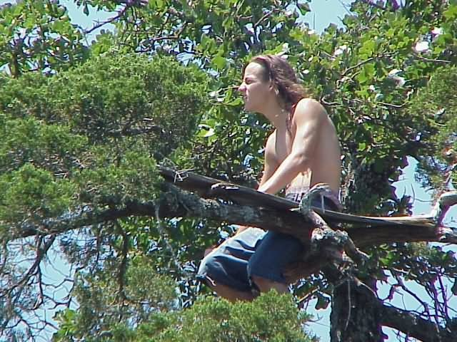 Me in a Tree