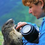 Me & the Marmots