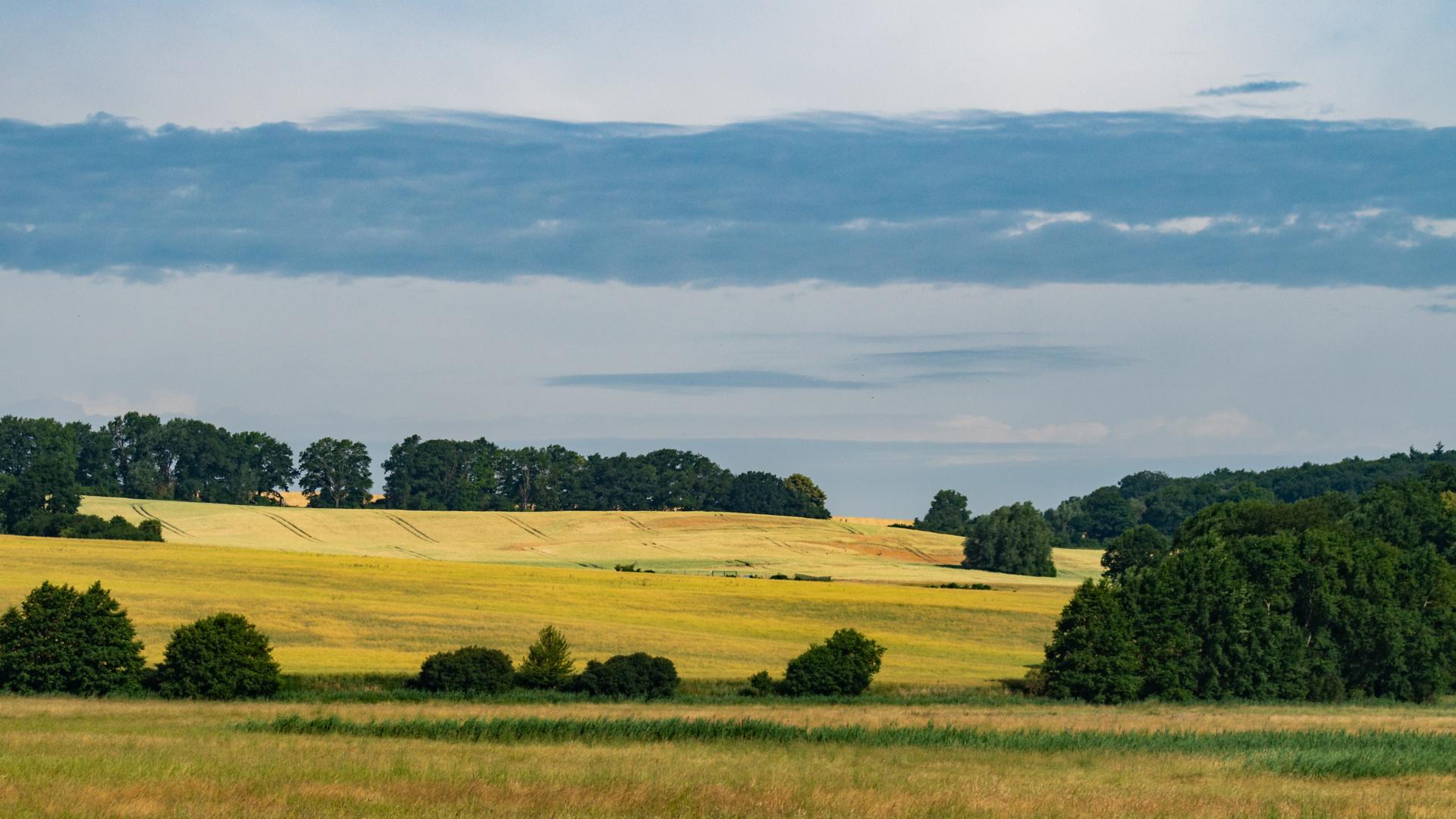 Bild Mecklenburg Vorpommern