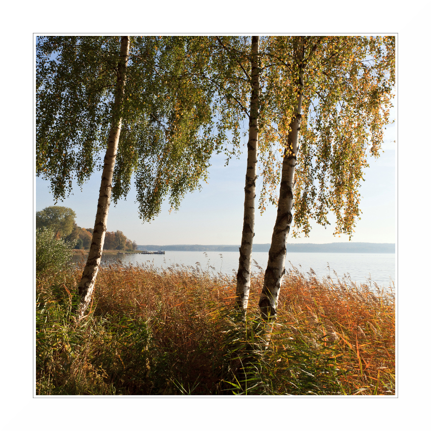 Mecklenburger Landschaft