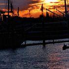 mediteranes Flair in Hamburg´s Hafen