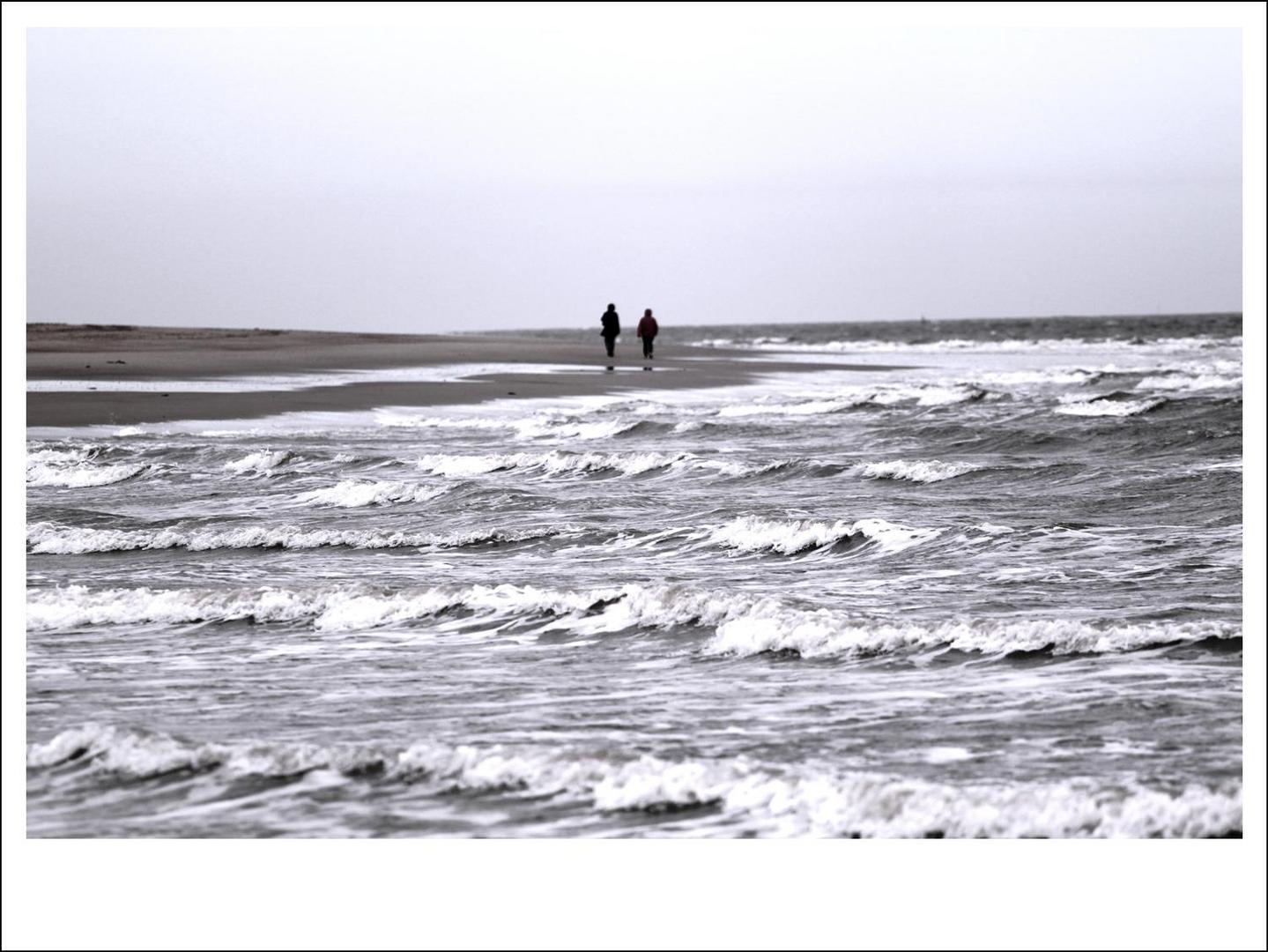 Meer sehen, Meer fühlen, Meer hören, Meer spüren
