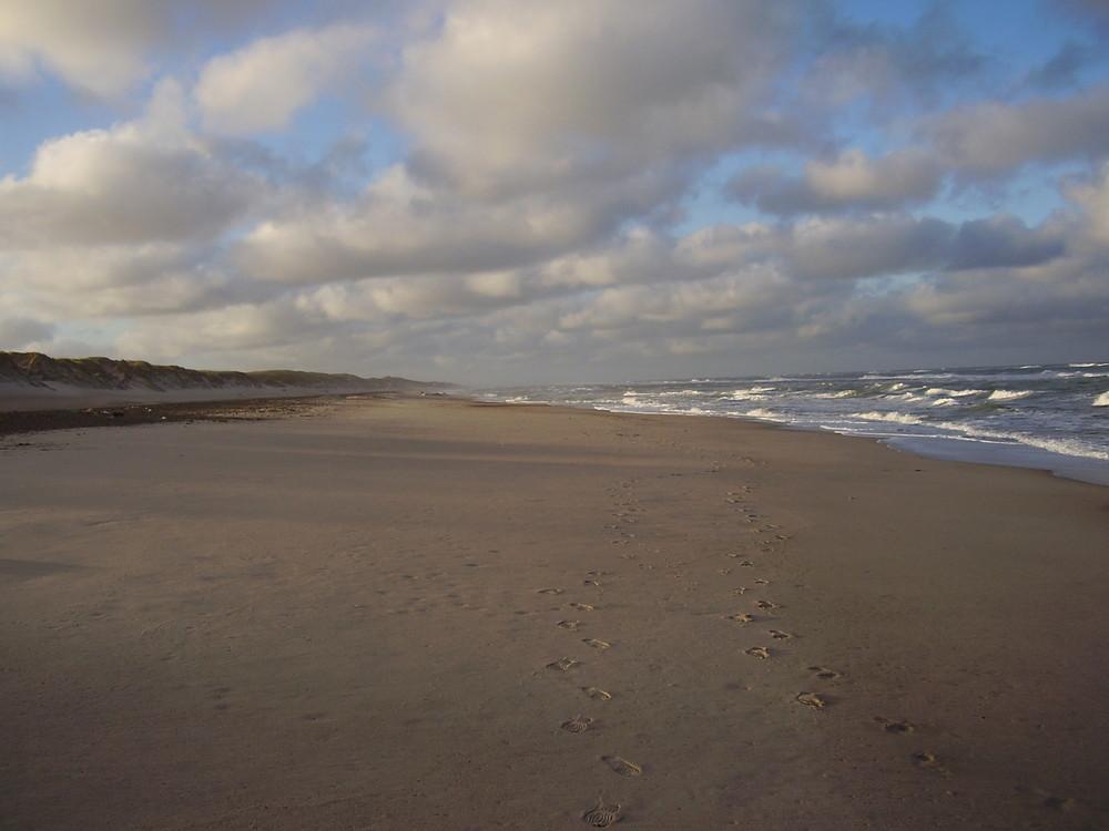 Meer & Spuren im Sand