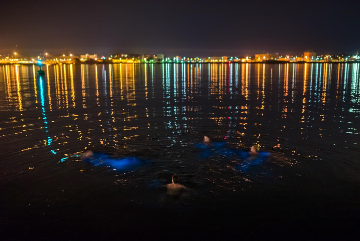 Meeresleuchten in der City