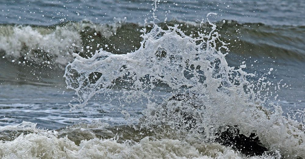 Meeresungeheuer