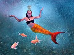 Meerjungfrau aus 1001 Nacht
