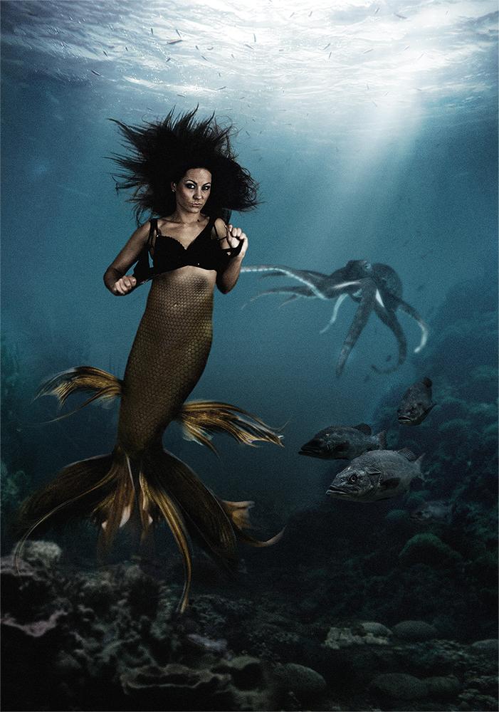 Meerjungfrauen Küsst Man Nicht