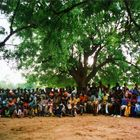 Meeting under l'arbre à palabres - Fouloum