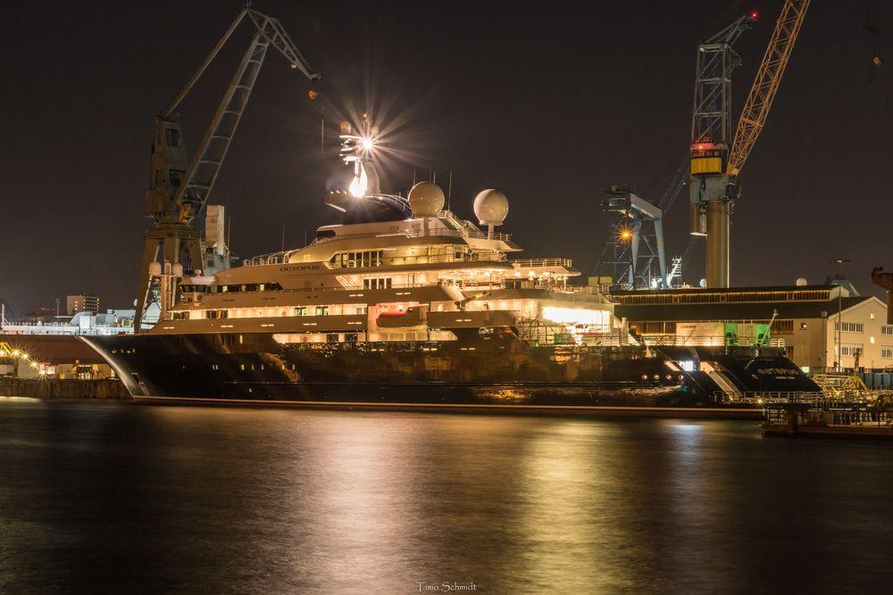 Oktopus Hamburg