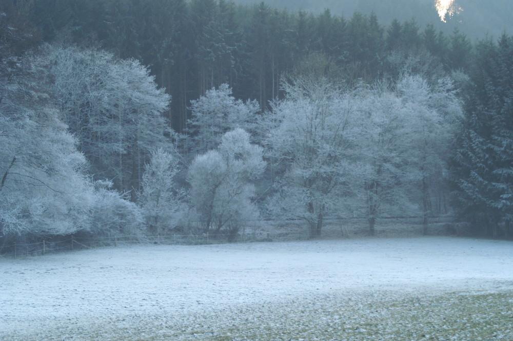 mehr Frost als Schnee