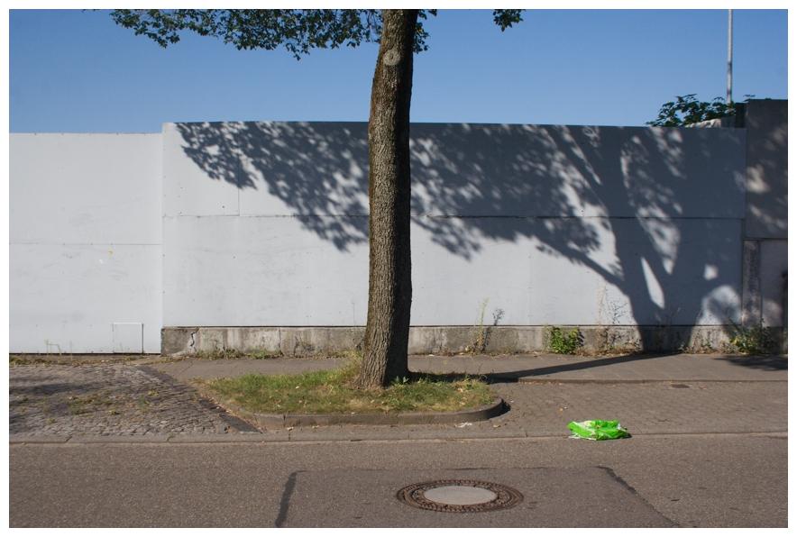 Mehr grün in der Stadt sorgt für besseres Klima und zufriedenere Bevölkerer. Der Baumstamm...