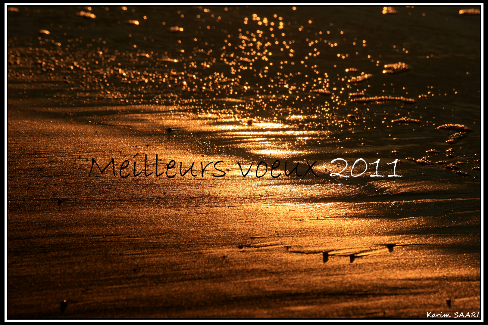 MEILLEURS VOEUX 2011 / BEST WISHES FOR 2011