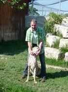 Mein 2. neues Haustierchen ;-) Gepard
