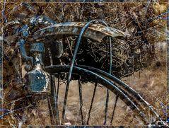 Mein altes blaues Fahrrad