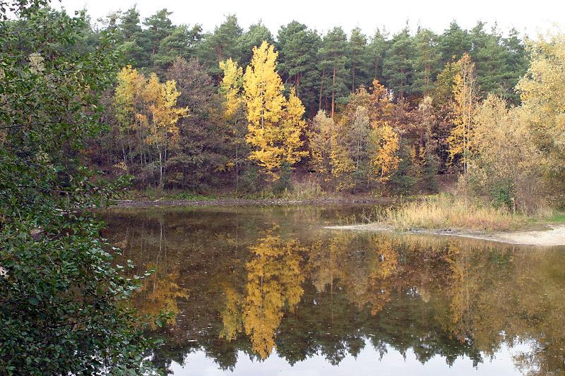 Mein Badeteich im Herbst