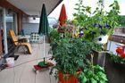 Mein Balkongarten (1)