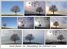 mein Baum...