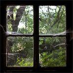 mein Blick aus dem Schlafzimmerfenster ist nicht so toll wie die anderen ...