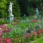 Mein bunter Frühlinggsgarten - 6