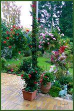 Mein bunter Garten am 13.11.2013