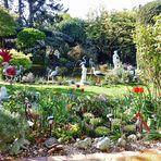 Mein bunter Garten - so strahlt er heute