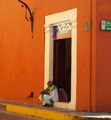 Mein buntes Mexiko 4