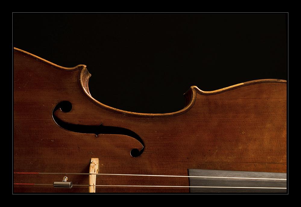 Mein Cello (3)