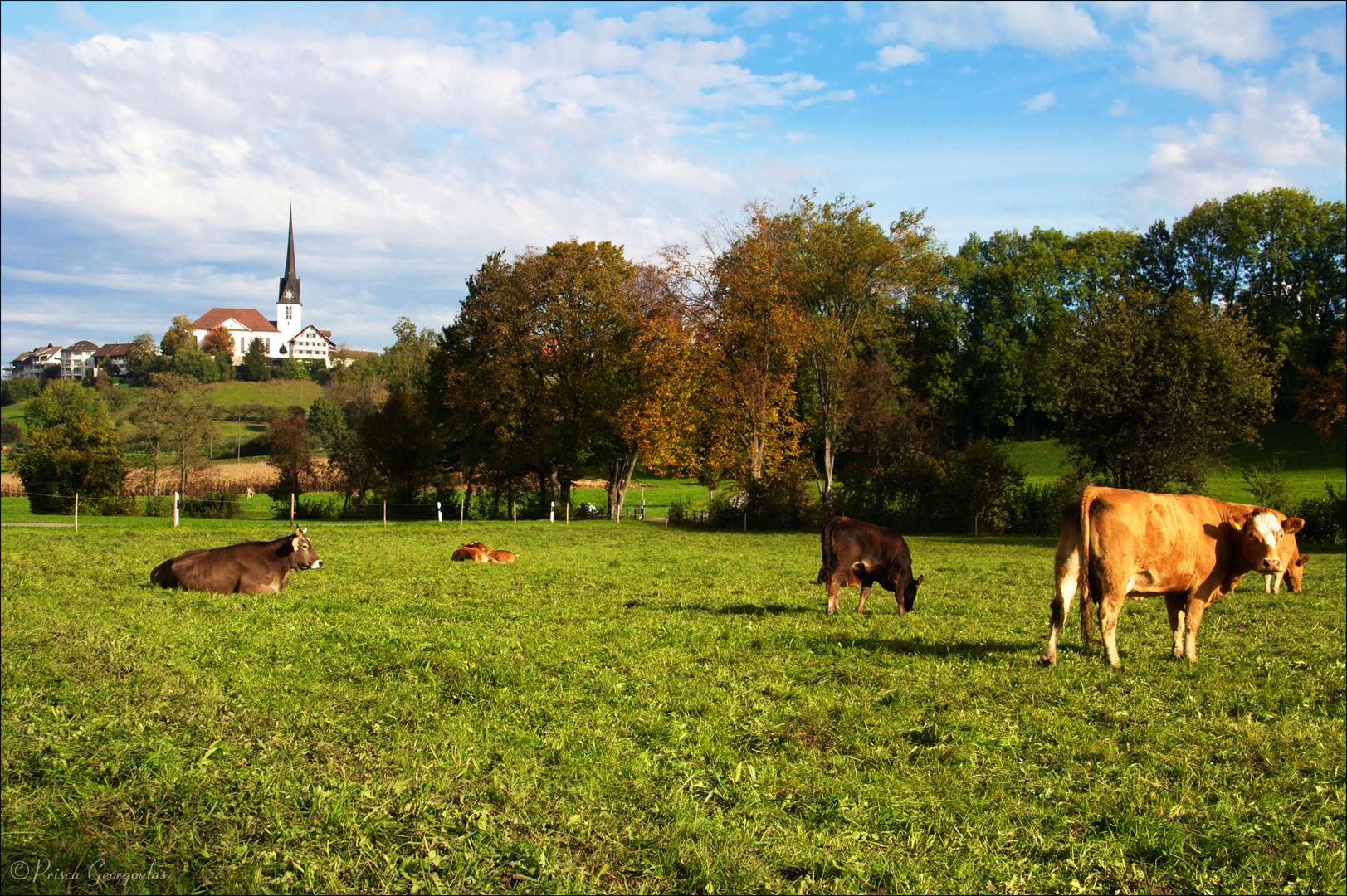 Mein Dorf im Herbst!