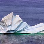 Mein Eisberg vor Twillingate Newfoundland